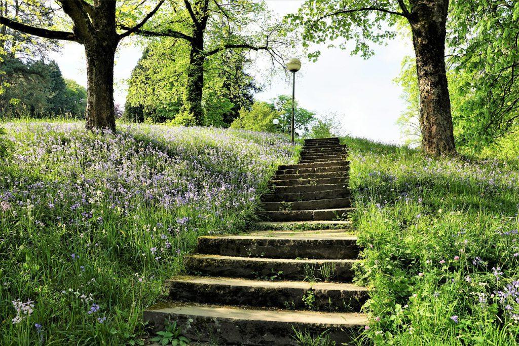 stairs, park, garden